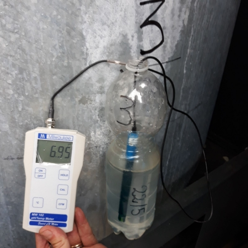acqua depurata micro organismi